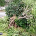 Tropical Storm Fay Bermuda, October 12 2014-111