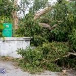Tropical Storm Fay Bermuda, October 12 2014-113