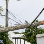 Tropical Storm Fay Bermuda, October 12 2014-118