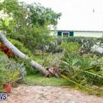 Tropical Storm Fay Bermuda, October 12 2014-119