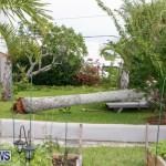 Tropical Storm Fay Bermuda, October 12 2014-122