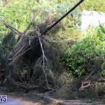 Tropical Storm Fay Bermuda, October 12 2014-147