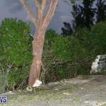 Tropical Storm Fay Bermuda, October 12 2014-182