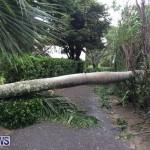 Tropical Storm Fay Bermuda, October 12 2014-210