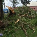 Tropical Storm Fay Bermuda, October 12 2014-213