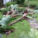 Tropical Storm Fay Bermuda, October 12 2014-215