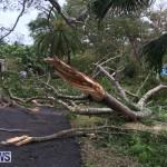 Tropical Storm Fay Bermuda, October 12 2014-216