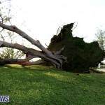 Tropical Storm Fay Bermuda, October 12 2014-228