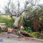 Tropical Storm Fay Bermuda, October 12 2014-235