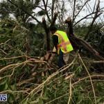 Tropical Storm Fay Bermuda, October 12 2014-244