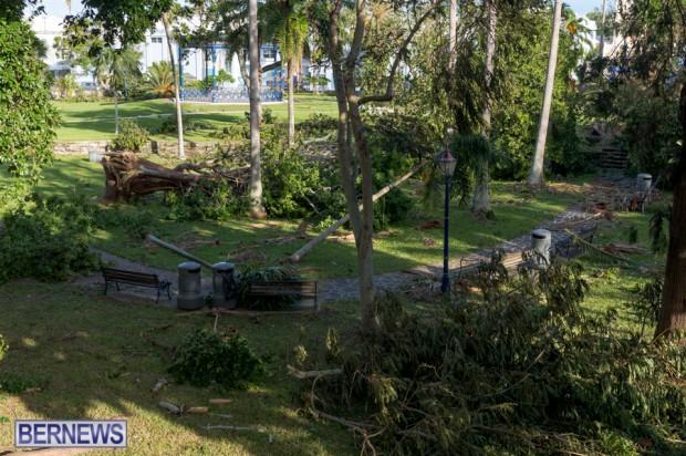 Victoria Park Bermuda after Storm Fay 2014 (10)