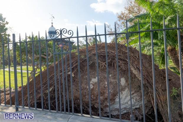 Victoria Park Bermuda after Storm Fay 2014 (3)