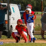 YAO Youth Baseball Bermuda, October 5 2014-15
