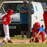 YAO Youth Baseball Bermuda, October 5 2014-3