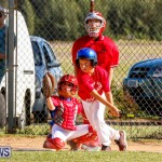 YAO Youth Baseball Bermuda, October 5 2014-35
