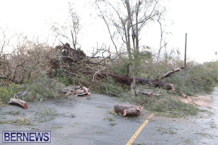 hurricane-gonzalo-bermuda201