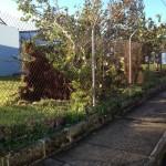 hurricane-gonzalo-bermuda80