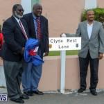 Clyde Best Lane Bermuda, November 1 2014-26