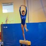 Gymnastics Bermuda, November 8 2014-11