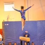 Gymnastics Bermuda, November 8 2014-13