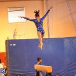 Gymnastics Bermuda, November 8 2014-14