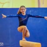 Gymnastics Bermuda, November 8 2014-16