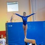 Gymnastics Bermuda, November 8 2014-17