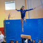 Gymnastics Bermuda, November 8 2014-18