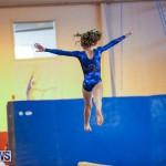 Gymnastics Bermuda, November 8 2014-19