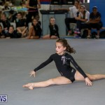Gymnastics Bermuda, November 8 2014-2