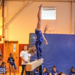 Gymnastics Bermuda, November 8 2014-23