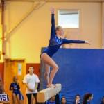 Gymnastics Bermuda, November 8 2014-24