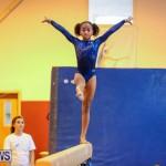 Gymnastics Bermuda, November 8 2014-30