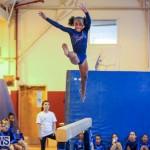 Gymnastics Bermuda, November 8 2014-31