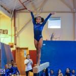 Gymnastics Bermuda, November 8 2014-33