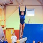 Gymnastics Bermuda, November 8 2014-34