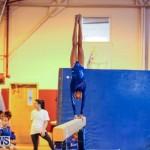Gymnastics Bermuda, November 8 2014-37