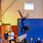 Gymnastics Bermuda, November 8 2014-40
