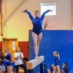 Gymnastics Bermuda, November 8 2014-42
