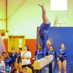 Gymnastics Bermuda, November 8 2014-44