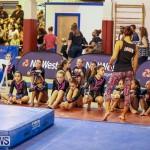 Gymnastics Bermuda, November 8 2014-5