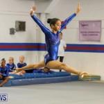 Gymnastics Bermuda, November 8 2014-50