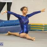 Gymnastics Bermuda, November 8 2014-55