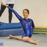 Gymnastics Bermuda, November 8 2014-56
