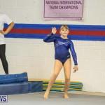 Gymnastics Bermuda, November 8 2014-58