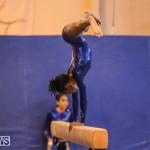 Gymnastics Bermuda, November 8 2014-6