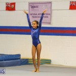 Gymnastics Bermuda, November 8 2014-63