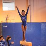 Gymnastics Bermuda, November 8 2014-8