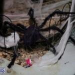 Halloween Bermuda, October 31 2014-11