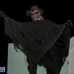 Halloween Bermuda, October 31 2014-5